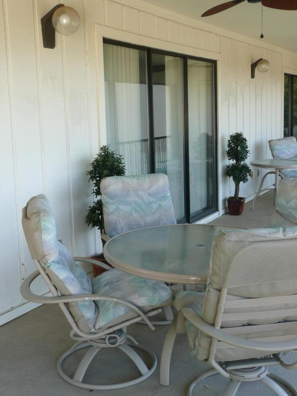 Screened Deck with Ceiling Fans 40' x 10'