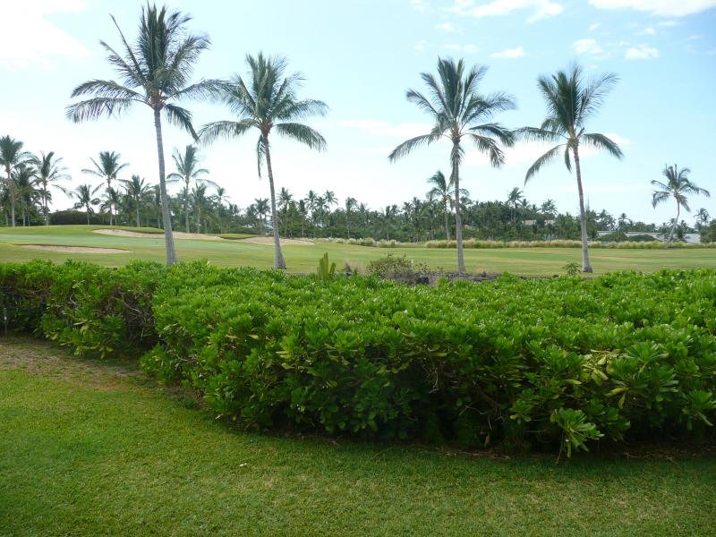 13th Green of the Beach Course from the Lanai