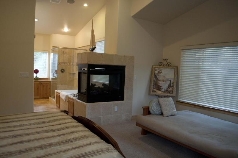 Jacuzzi and Fireplace in Master Bedroom