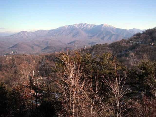 Mt LeConte view from deck