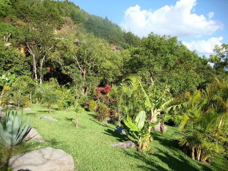 Stunning gardens part 2