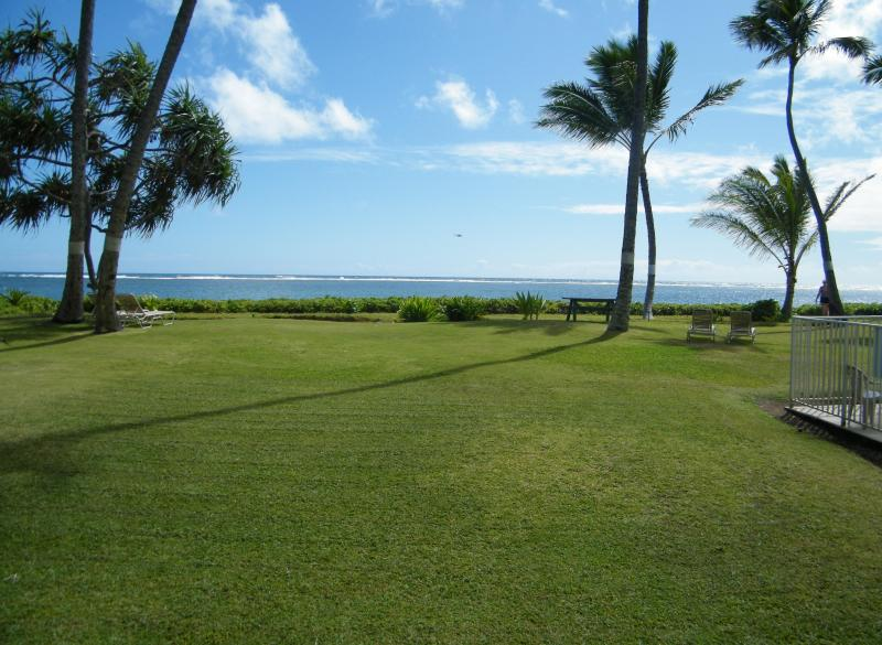 The view from the lanai, beach and ocean are just the other side of the grass.