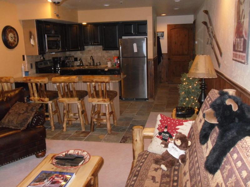 Large Living Room and Kitchen with highest of quality furnishings and kitchen supplies