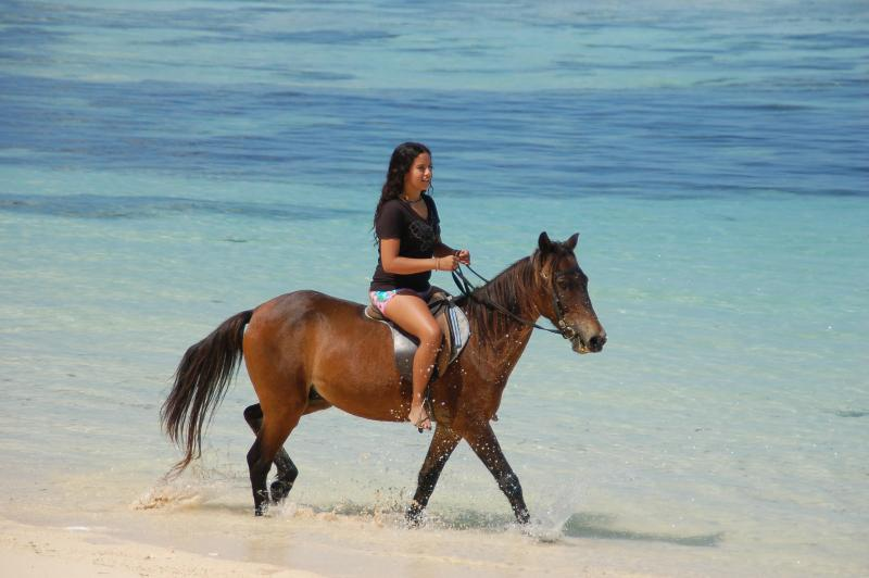 Horse riding available on the beach or along country trails.