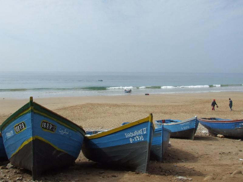 Traditional fishing boats catching your fresh fish