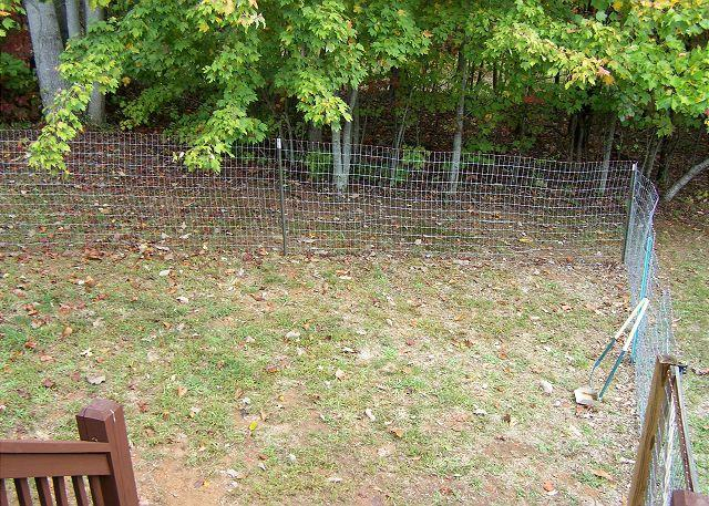 Fence for your 4-legged Friend in the back porch