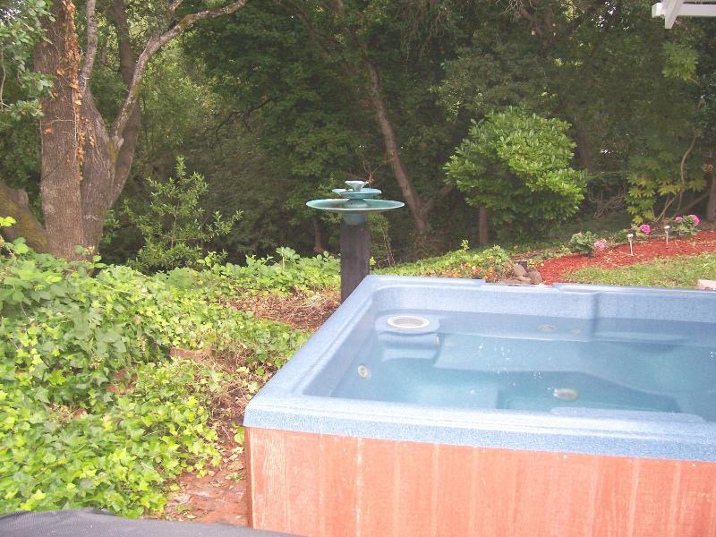 Hot tub en vue de creekside woodsy