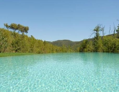 Luxury 6 Bedroom Rognes Villa with a Pool, Provence, holiday rental in Rognes