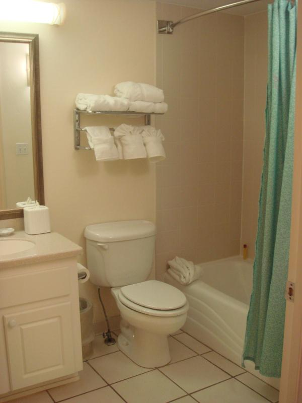 Full Bathroom, with a tub and shower.