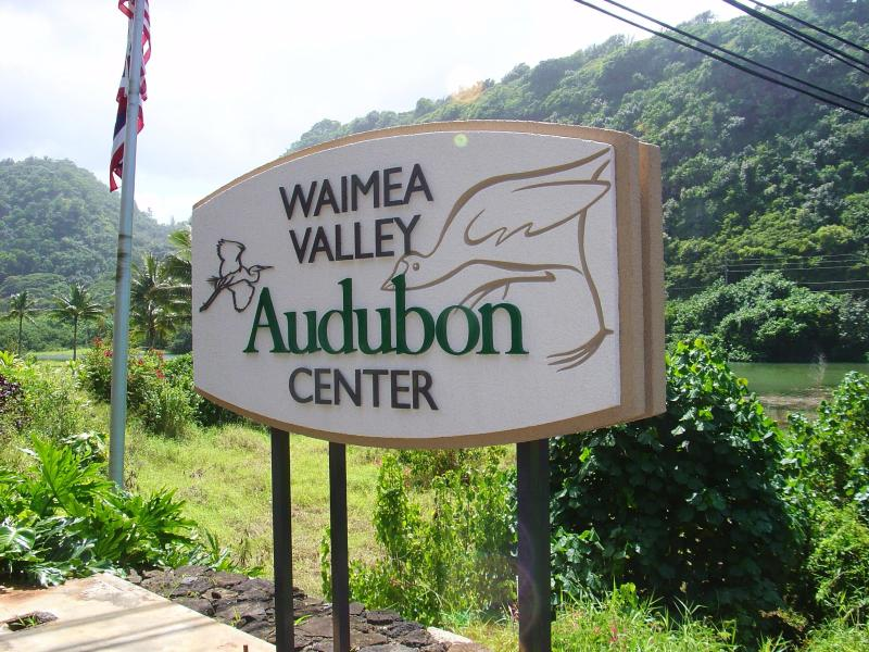 Waimea Valley/Waterfall! One of the most beautiful valleys on the island less then a mile away!