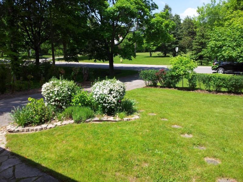 Frontyard in spring