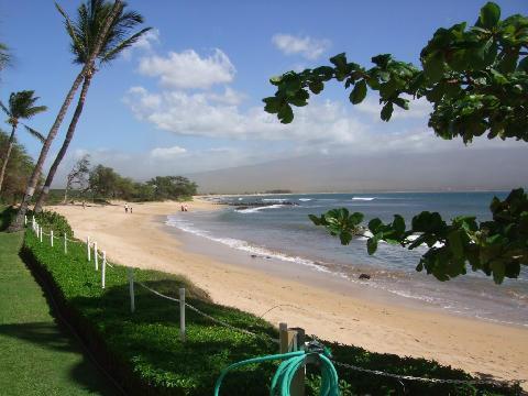 Beach Fronting Condo