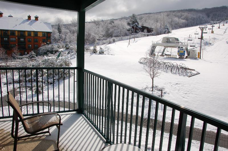 View of Ski Mountain from Balcony - water park or bike in summer