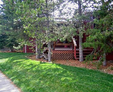 Firehole Ave entry deck - mature trees surround the cabin