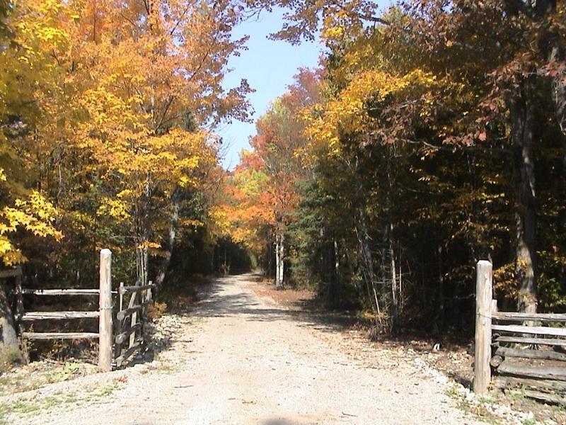 Colores de otoño en entrada entrada