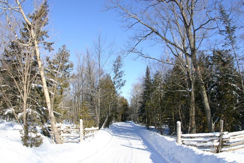 Entrada entrada - invierno