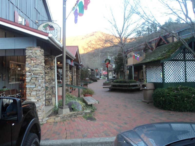 Robbinsville North Carolina Vacation Rentals By Owner