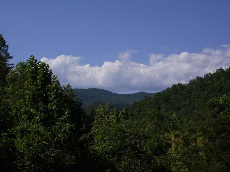 Vista da varanda da frente de Fox Run
