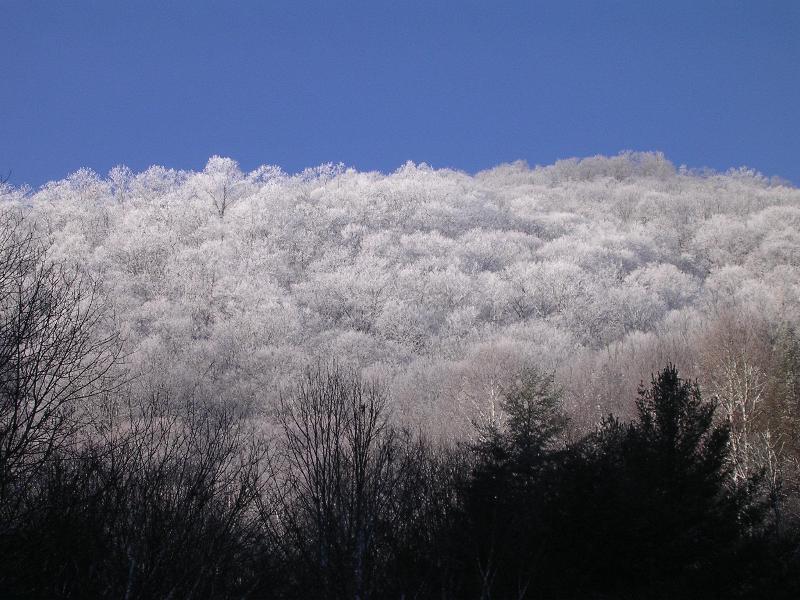 Uma vista da montanha atrás da cabina e depois de ficar cerca de 6 polegadas de neve no Natal!