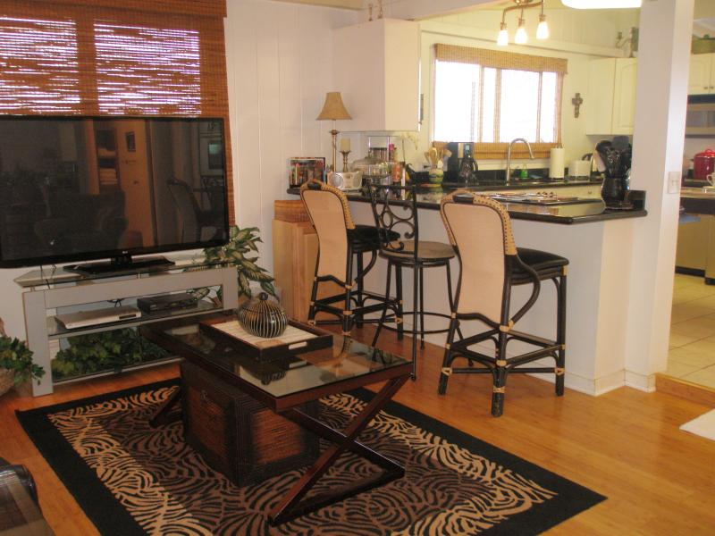 Living Room with 60' TV with cable & Wifi,   Air conditioner, and bar Open concept kitchen
