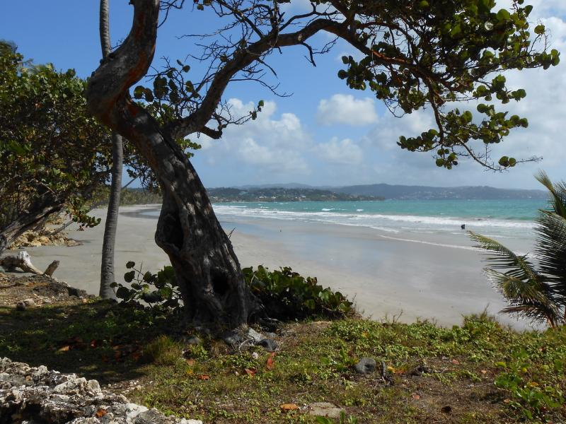 Beach only 500 meters away alongside hotel