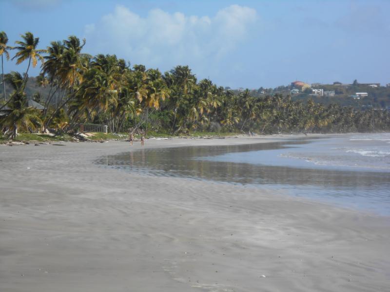 Beach 500 meters away
