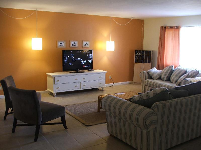 Grote woonkamer met flatscreen TV 42'