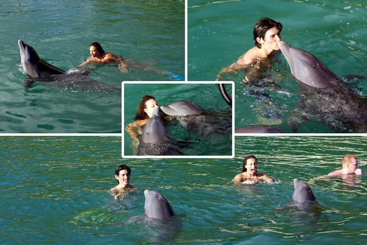 Onze gasten gingen zwemmen met de dolfijnen