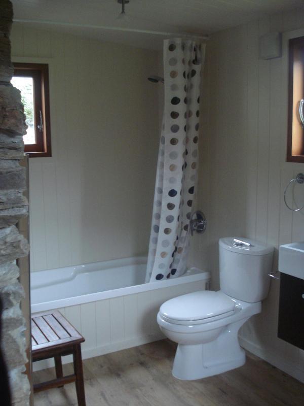 Baño completo con ducha y bañera separadas.