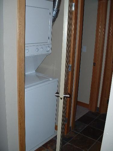 Tamaño completo lavadora y secadora en planta principal en armario