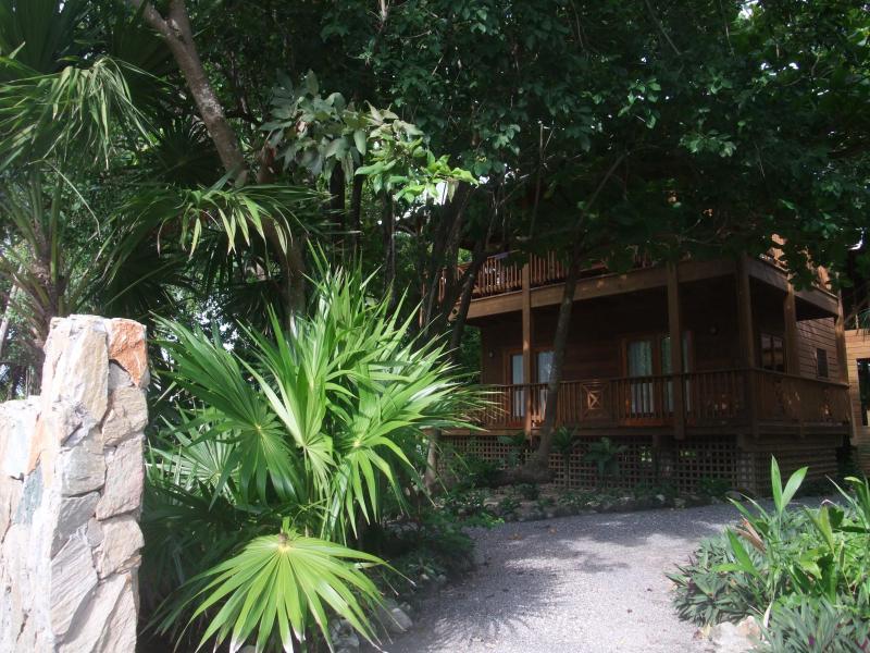 Vue depuis la rue Cocolobo Lodge