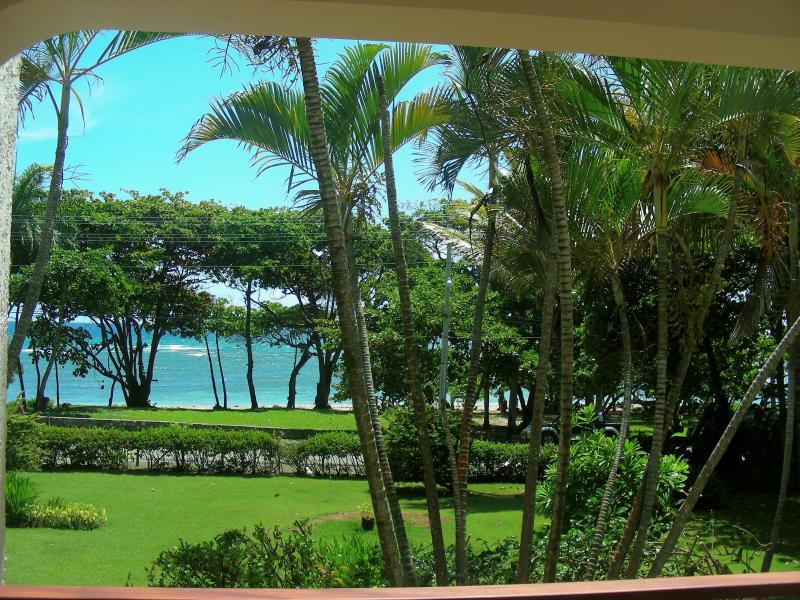 This is the front yard.  Just beyond that is the beach . . .