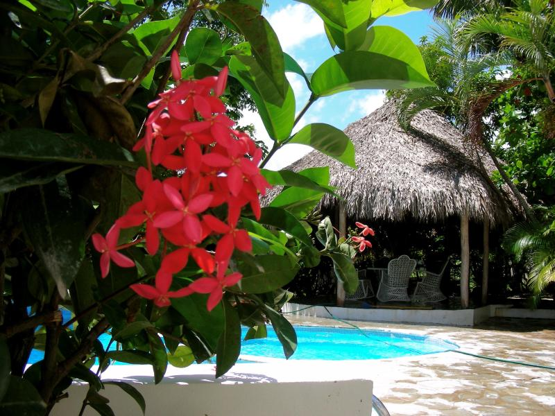 Tropical flowers, sunshine and ocean breezes -- it\'s all good!