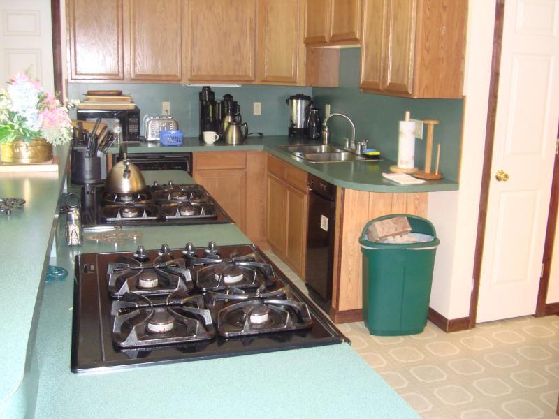 Heißluft-Öfen, Gasherde, Küche Aide Geschirrspüler, Müllpresse, Oberfläche Fans, großer Speicher