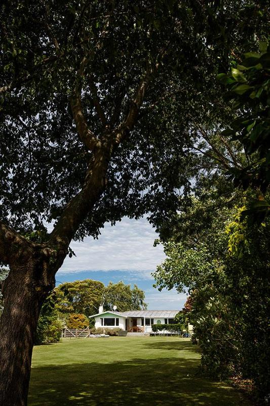 Amazing mature trees and shrubs are throughout the acre of garden.
