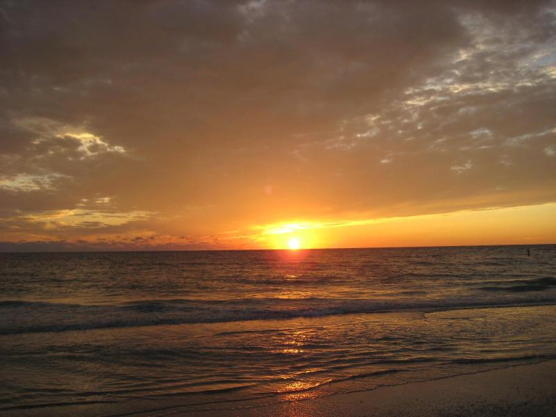 Chateaux Beach Front Condo, vacation rental in Indian Shores