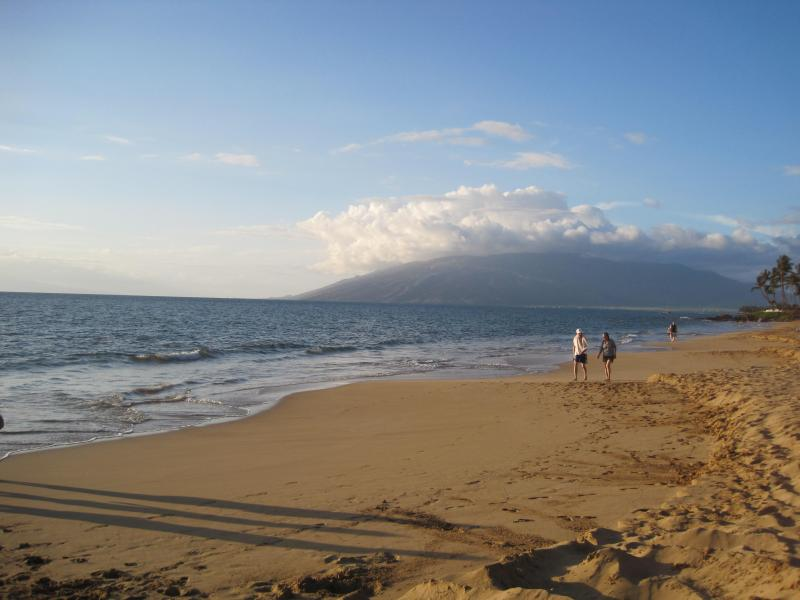 view from Kamaole 1/Charlie Young Beach