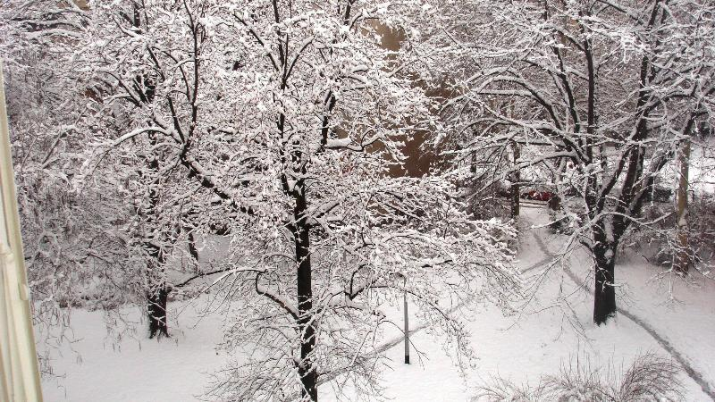 View from the balcony - winter