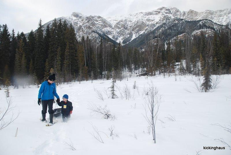 snowshoeing on private 10 acres