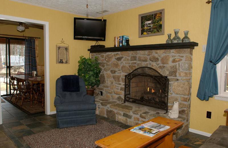 Living Room with Flat Screen TV, DVD player & Gas Log Fireplace