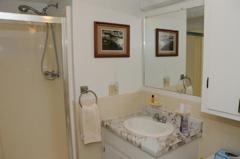 Private Master Bathroom includes; hand towel, bath mat, soap & shampoo, 2 rolls of toilet paper