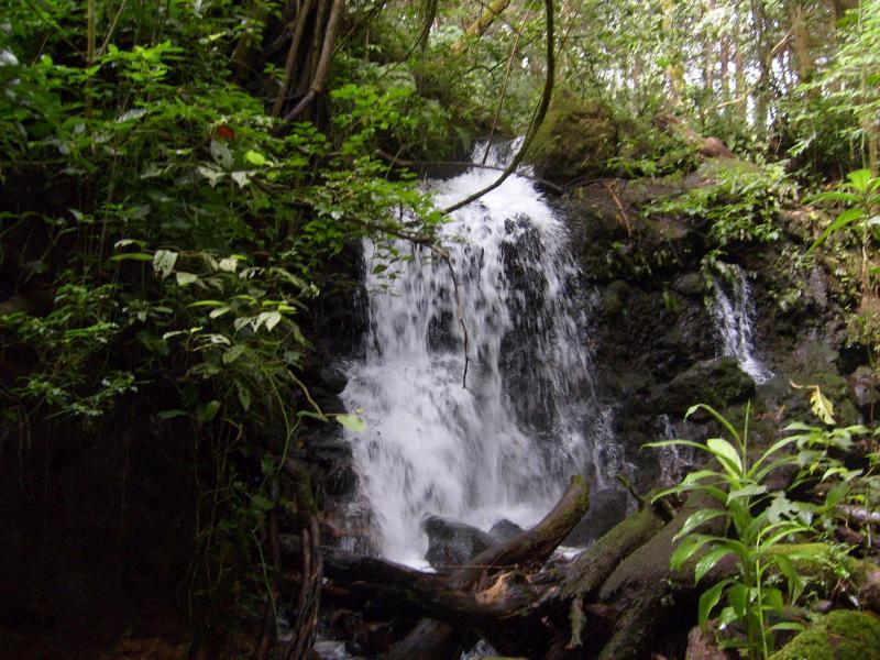 natürliche kristallklare Wasserfall