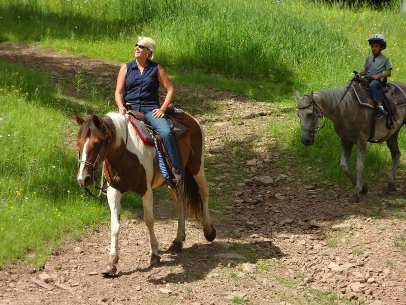 Horseback Riding in Summer