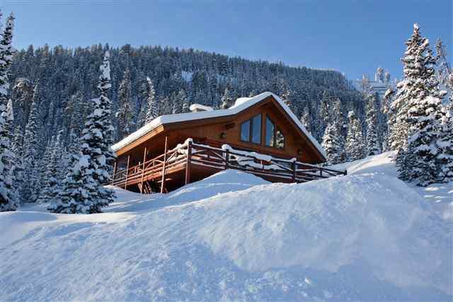Low Dog Lodge - Winter