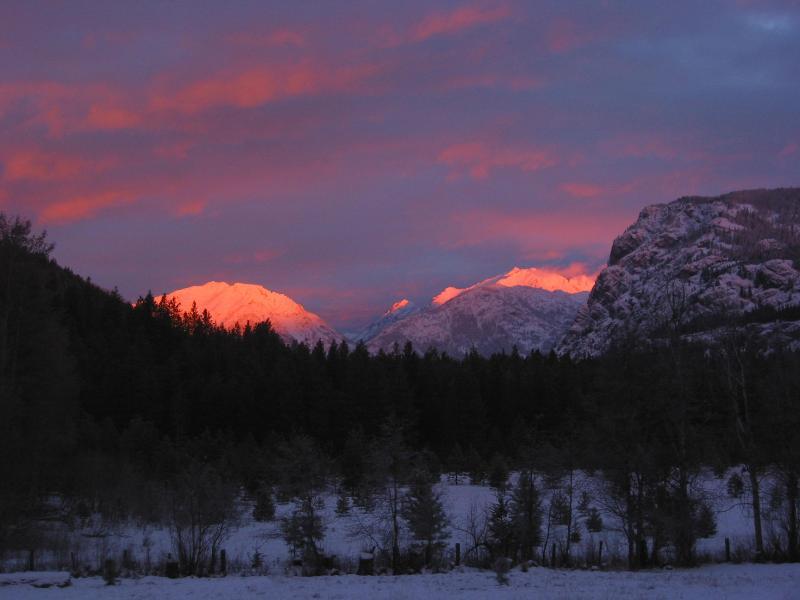 Timberline Meadows Winter Sunrise