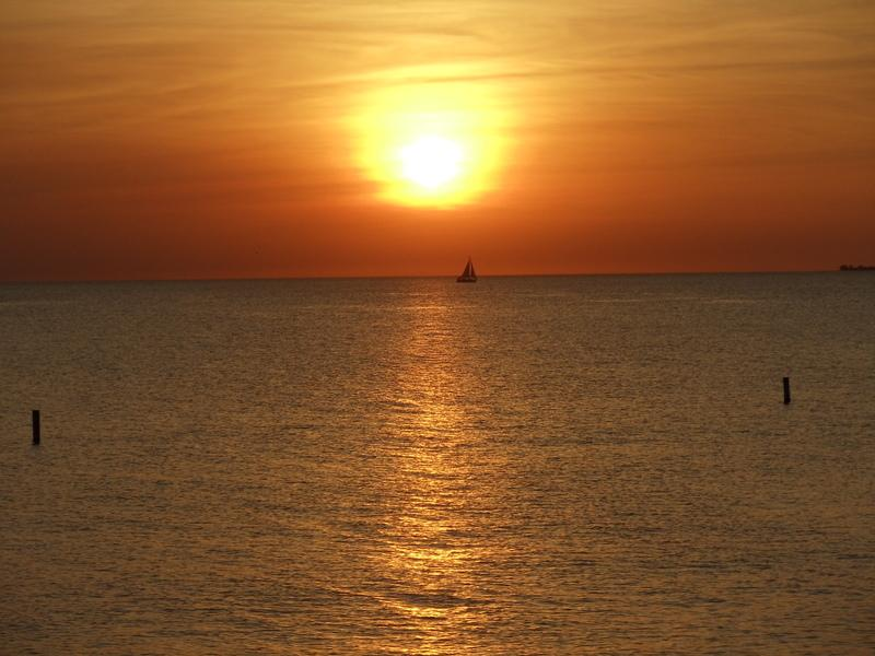 another lovely sunset in beautiful Ft. Myers!