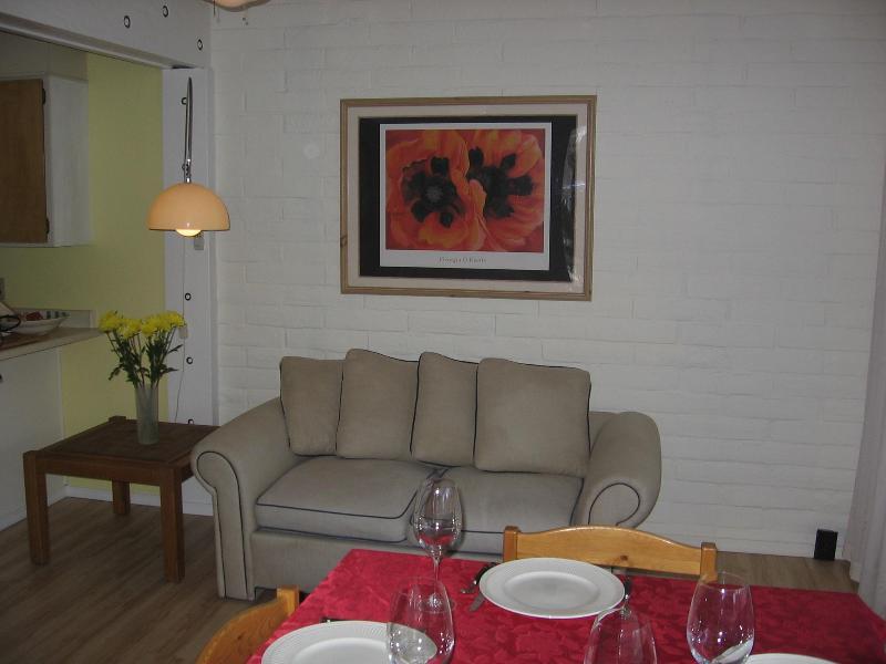 Living Room Ketchum condo