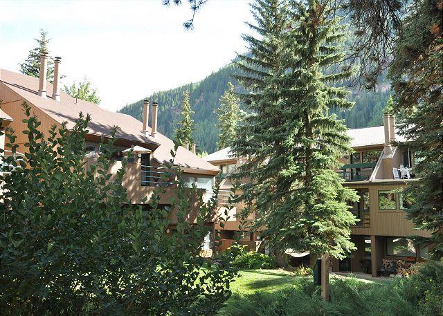 Pitkin Creek Building 5