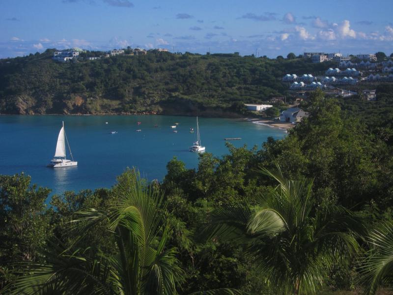 Crocus Harbour viewed from Oceana