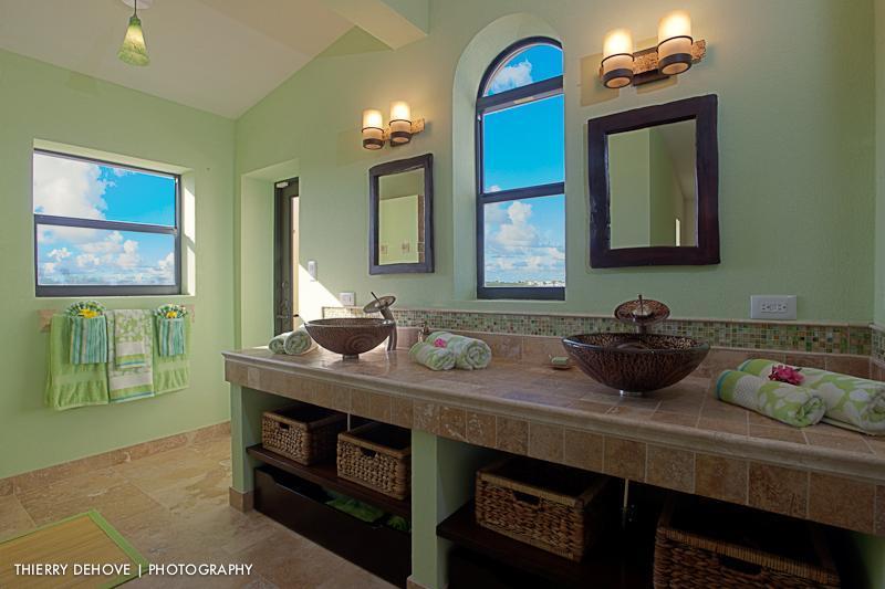 Lower level master suite bathroom